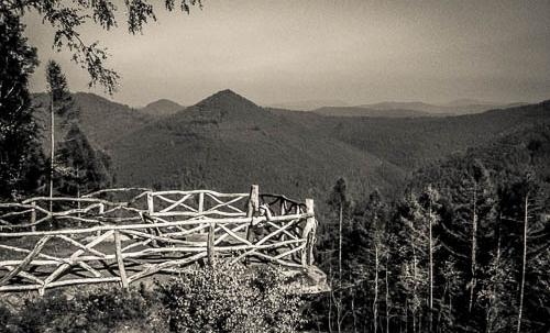 Pfaelzer Wald 3